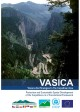 VASICA Visions and Strategies in the Carpathian Area